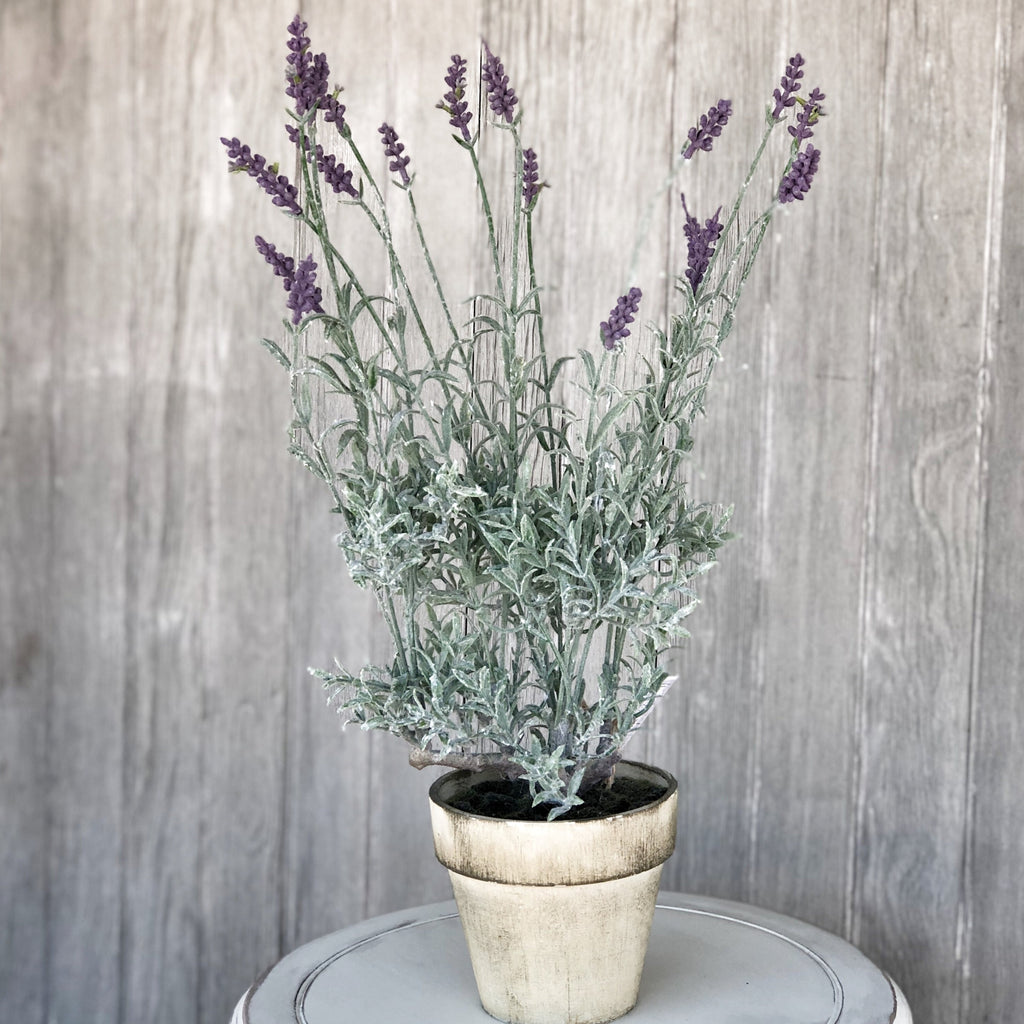 Potted Faux Lavender Plant - LOCAL ONLY