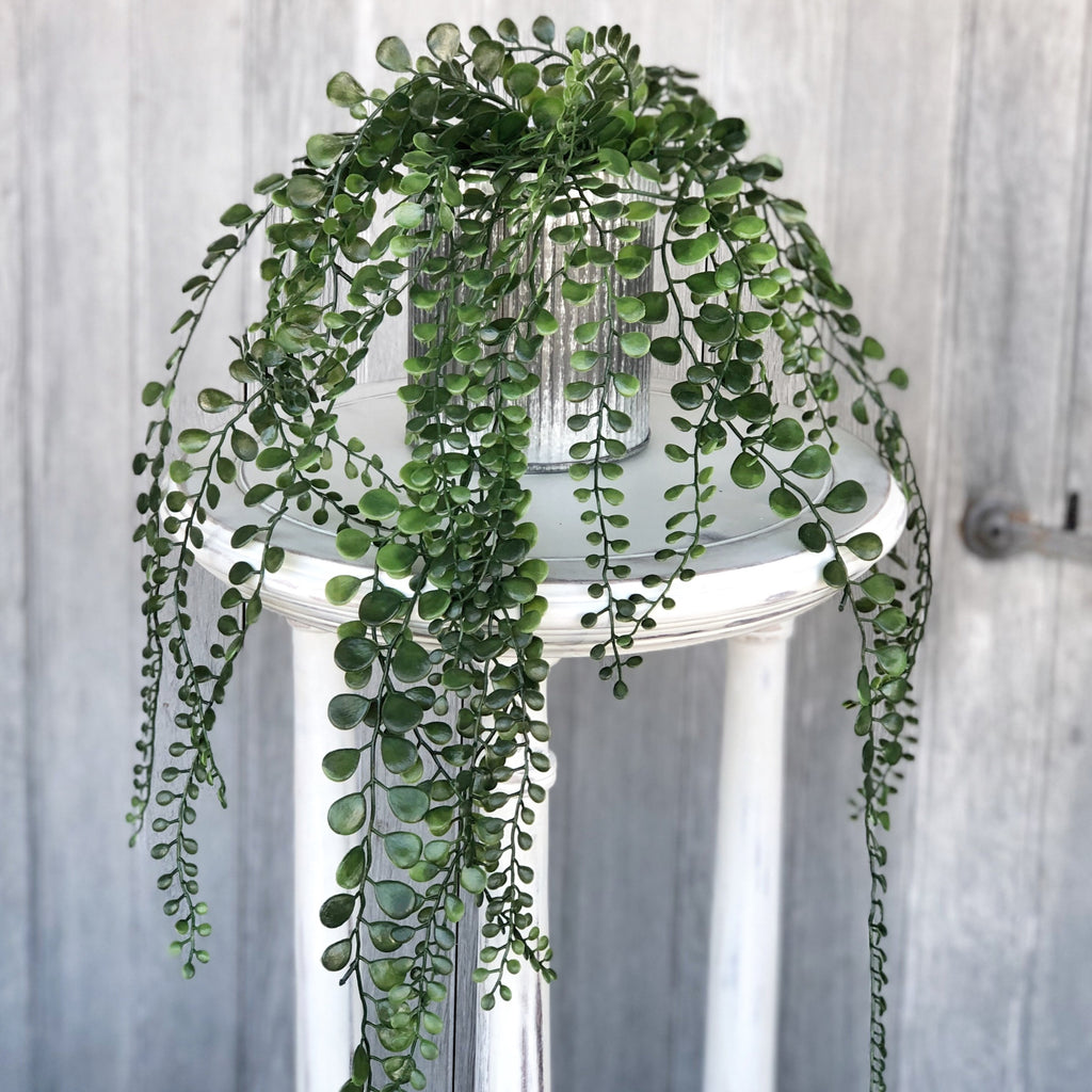 Silver Potted Faux Button Leaf Fern - LOCAL ONLY