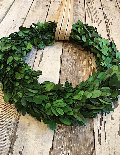 Preserved Boxwood Wreath, 10 Inch