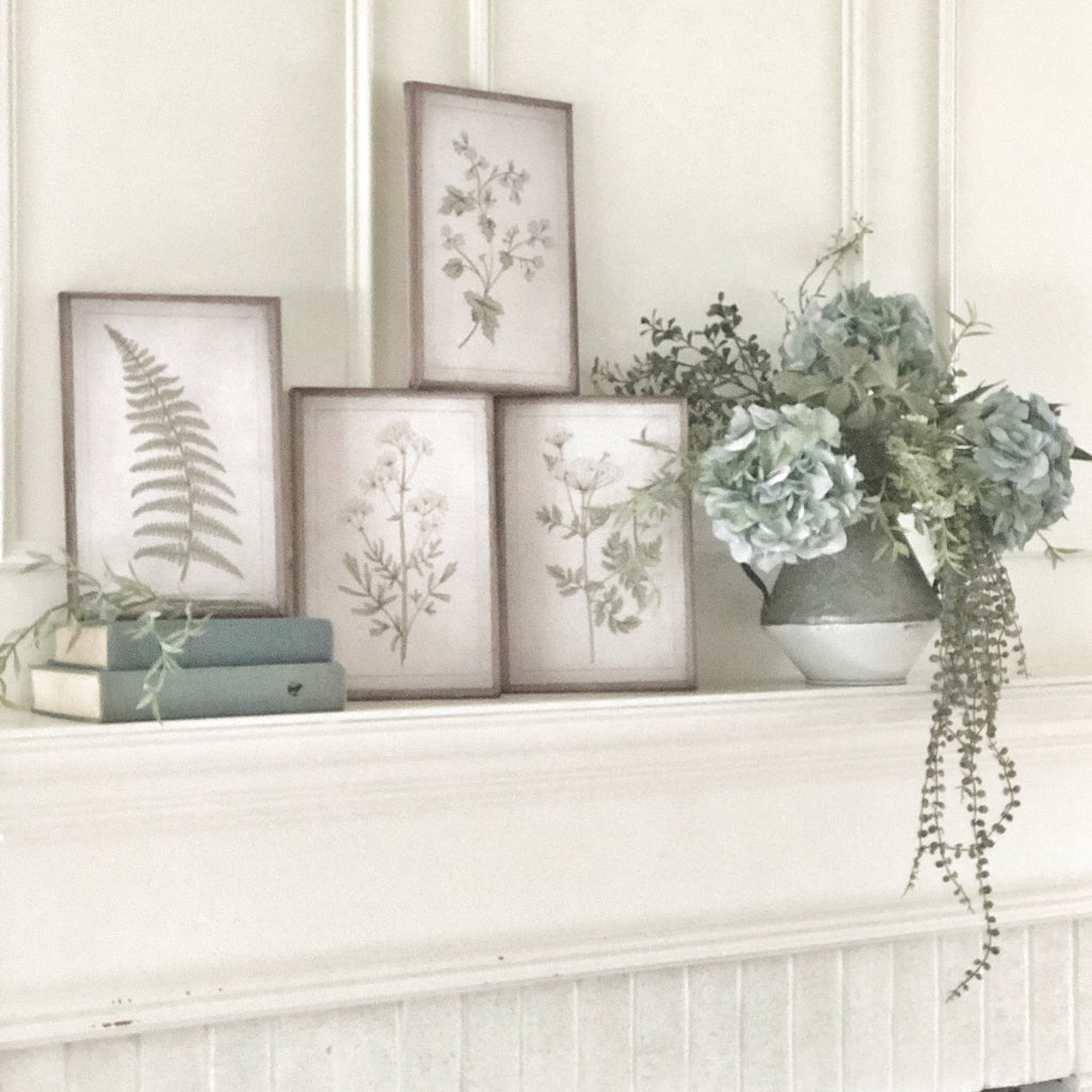 Canvas Botanical Prints, Set of 4 LOCAL ONLY