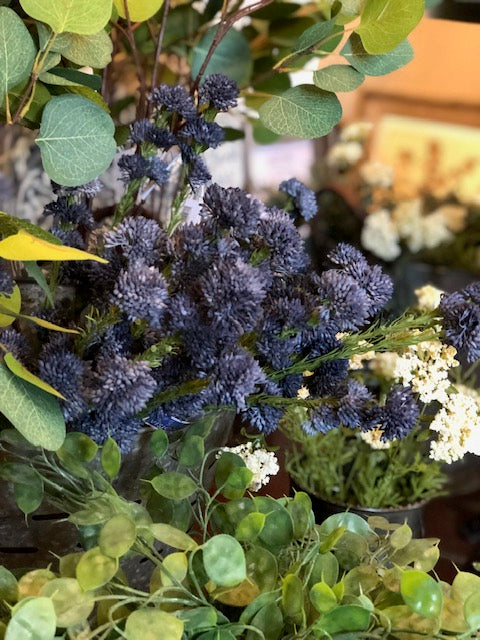 Blue Sedum Spray