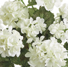 UV Protected White Floral Bush LOCAL ONLY