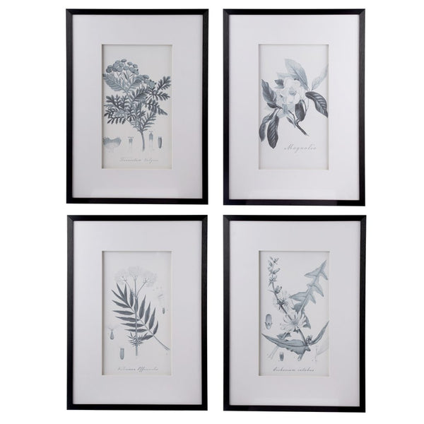 Framed Botanical Art, Set of 4