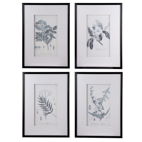 Framed Botanical Art, Set of 4 for $ 225.00