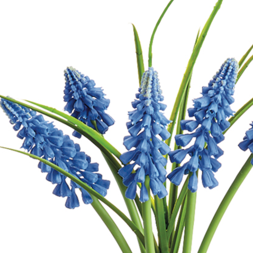 Real Touch Muscari Bundle LOCAL ONLY