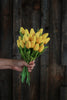 Yellow Real Touch Tulips, Set of Twelve Stems