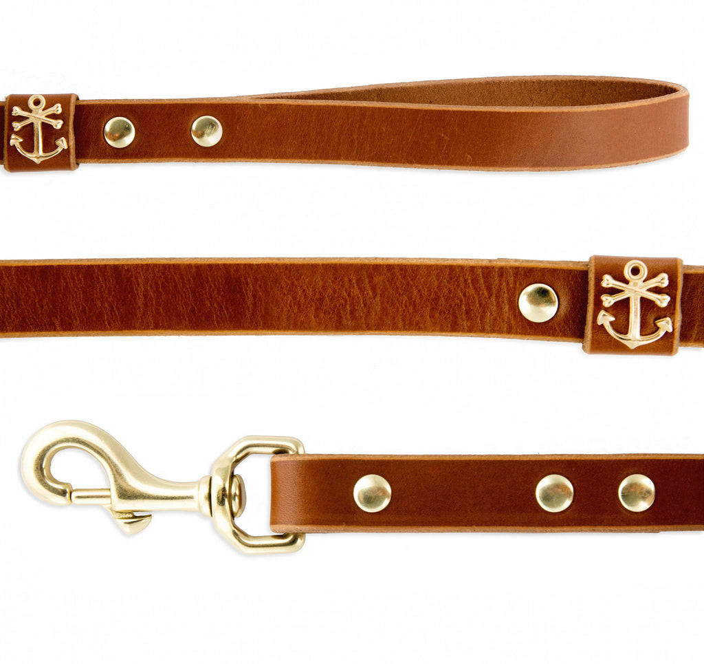 Hand Painted Leather Dog Leash