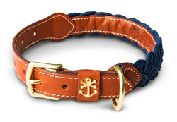 Hortock's Compass Rose Dog Collar