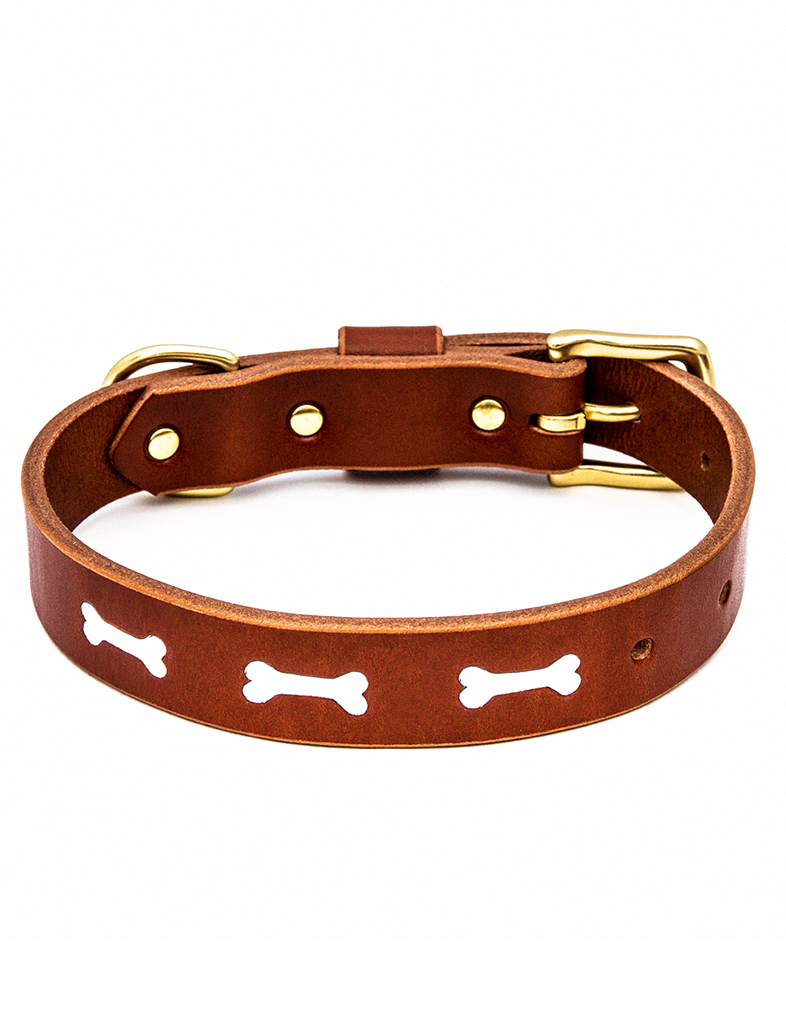 The Lucky Dog Collar