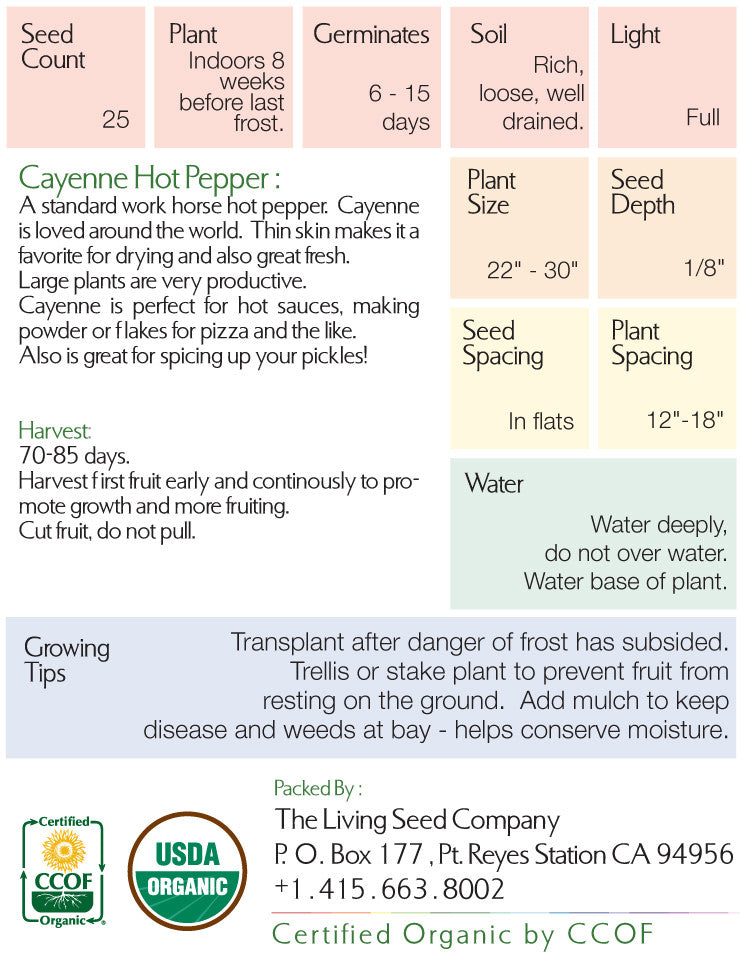 Organic Cayenne Hot Pepper Seed Packet