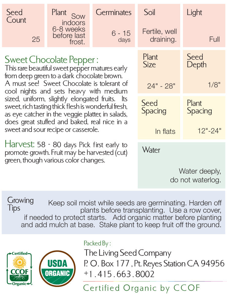 Organic Sweet Chocolate Pepper Seed Packet