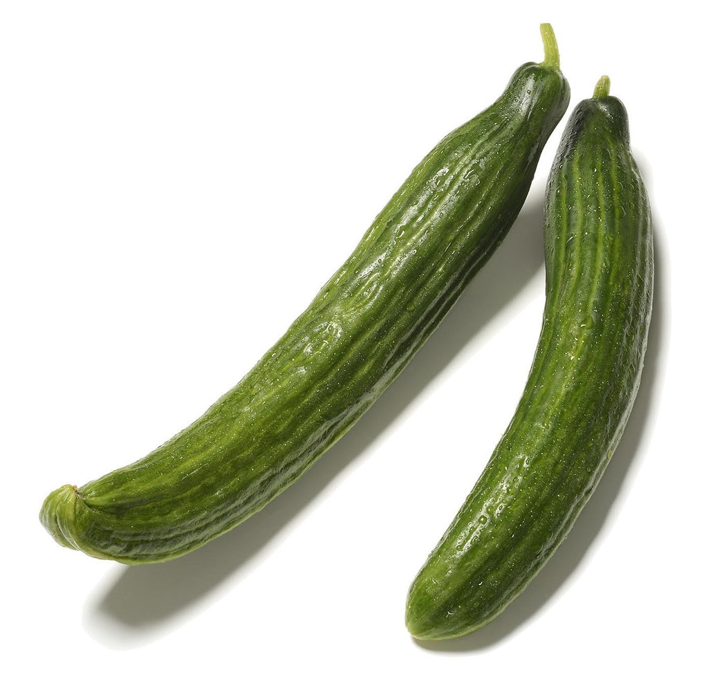 Organic English Telegraph Cucumber - Cucumis sativus