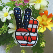 American Peace Patch (Two Piece), Luna Daze