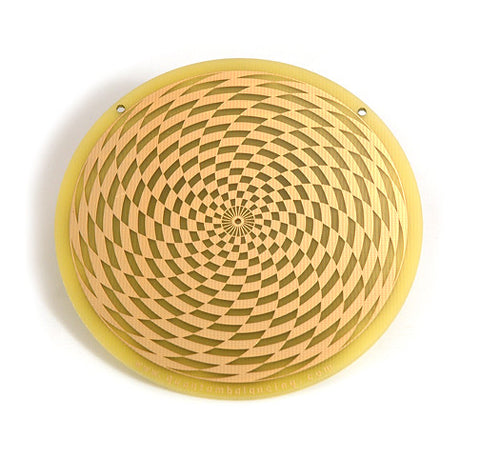 SENSOR Vortex Energy Scalar Wave Energy Plate