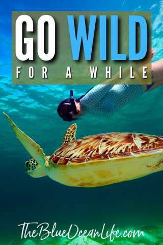ocean-quote-go-Wild-for-awhile