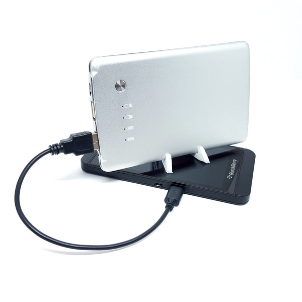 Power Visa+ 5600 mAh Phone Charger (Power Bank)