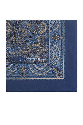Navy & Blue Complex Paisley