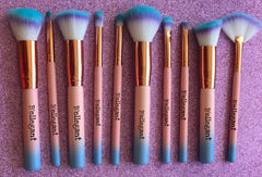 10 piece Cotton Candy Brush Set