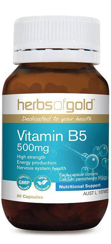 HERBS OF GOLD VITAMIN B5 500MG