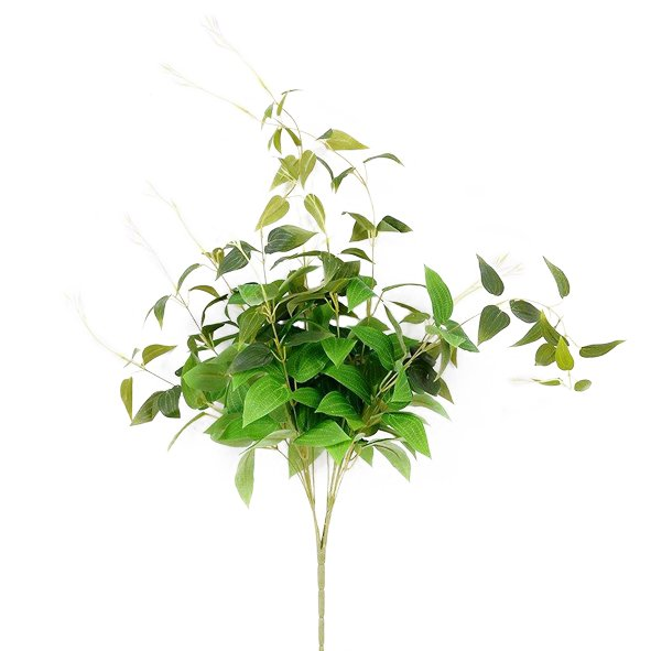 Foliage hanging clematis bush