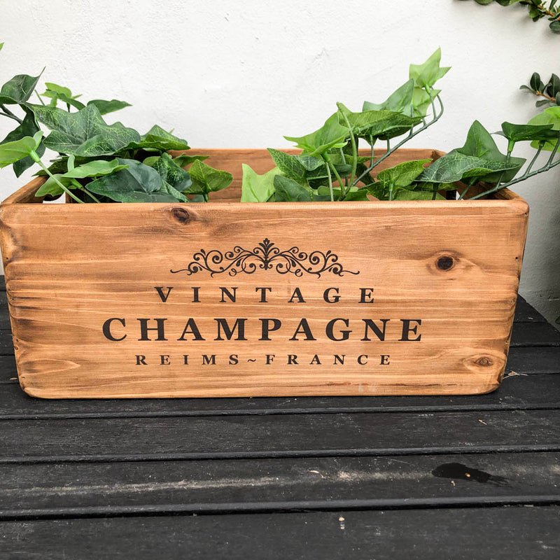 Champagne Box XL
