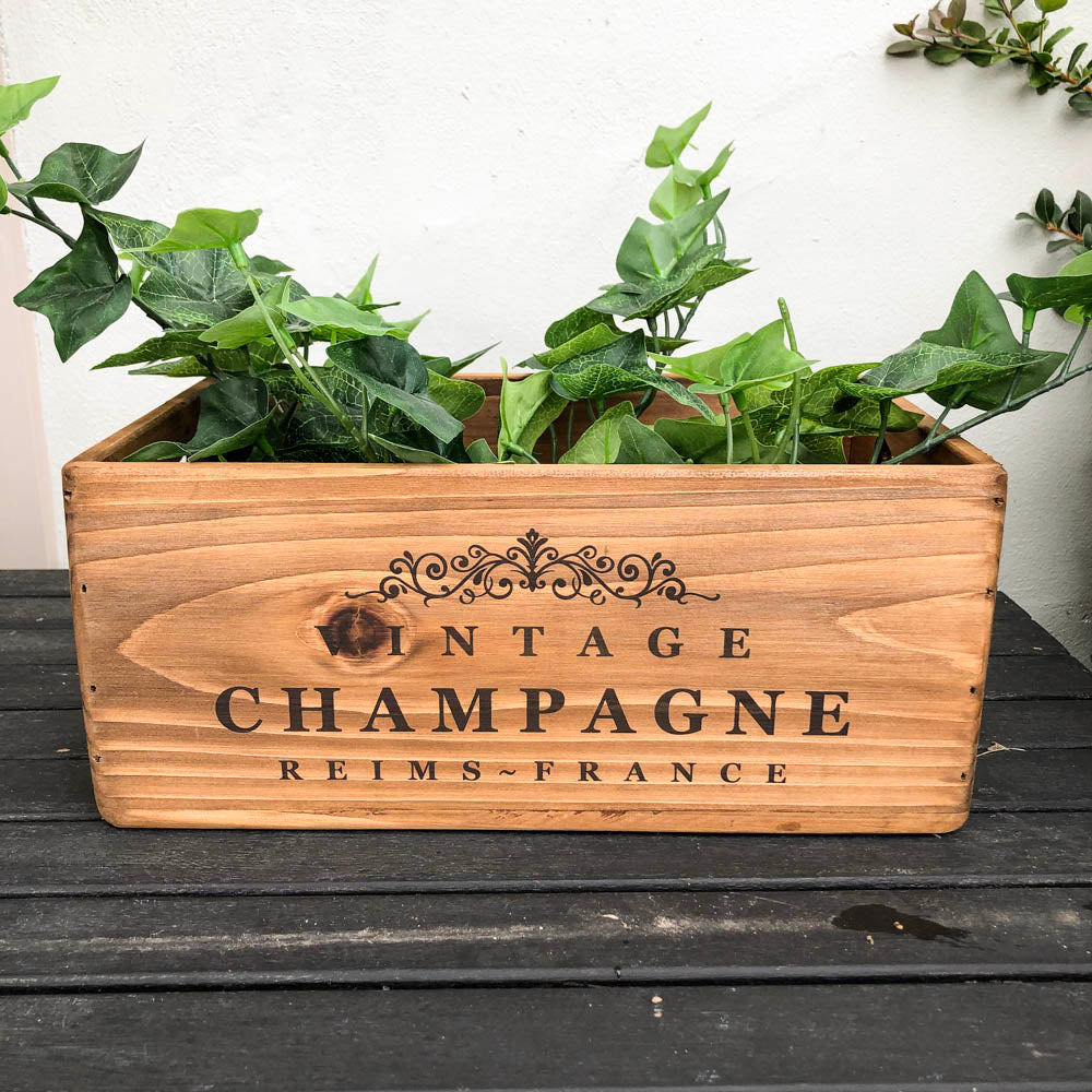 Champagne Box Large
