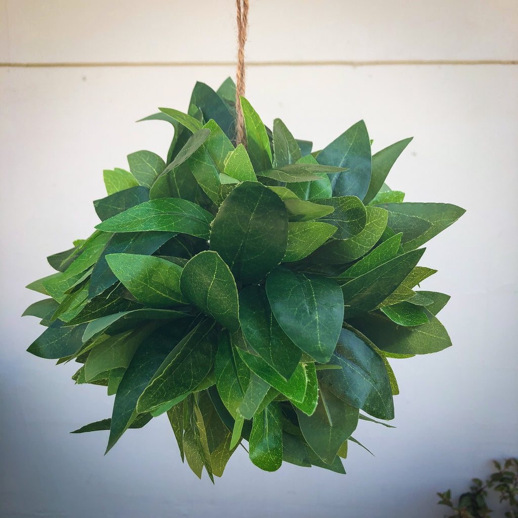 Hanging Topiary Ball Bay Leaf28cm