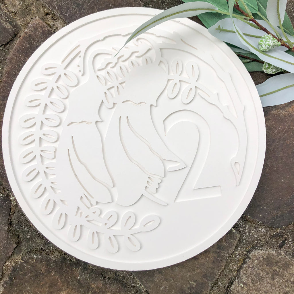 NZ 2 cent Coin Wall Art