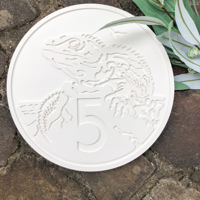 NZ 5 cent Coin Wall Art