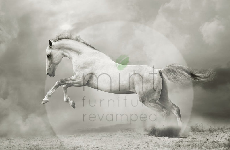 Jumping white horse A1 XL Decoupage Paper