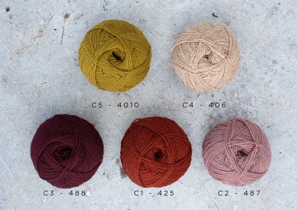5 balls of wool labelled with their shade numbers