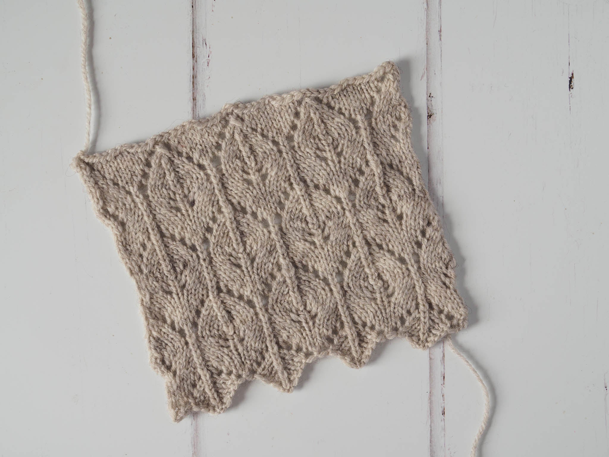 A lace swatch in cream laying flat on a white wooden surface.