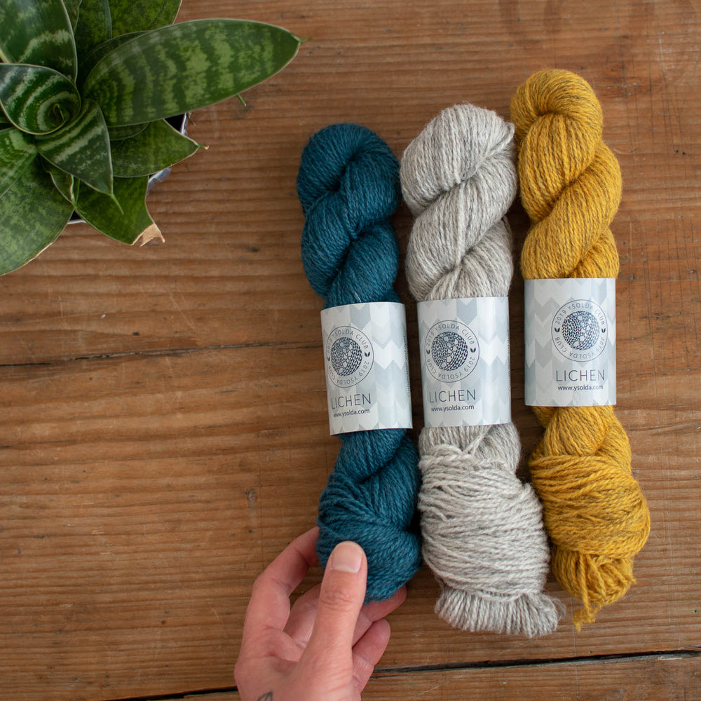 Flat lay image of 3 skeins of yarn on a wooden surface, left to right blue, grey, mustard yellow in colour. A white hand with an anchor tattoo is holding on the the base of the blue skein. There is a snake plant at the top left corner of the frame.