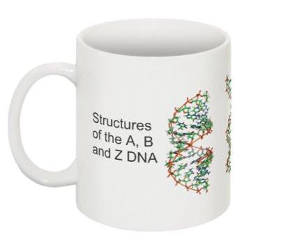 """Structures of DNA"" - Mug  - LabRatGifts - 1"