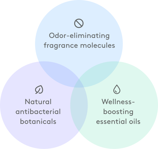 Venn diagram showing equal properties of odor-eliminating, natural botanicals, and wellness-boosting oils