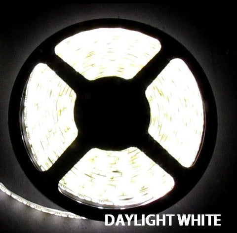 12V LED Strip Lights ~ 12V Single Color Light Strips;12V LED Strip Lights ~ 12V White LED Light Strips ~ White (Daylight) - 5050SMD Daylight White Flexible LED Light  Strip 16 Ft Reel Only - NON WATERPROOF