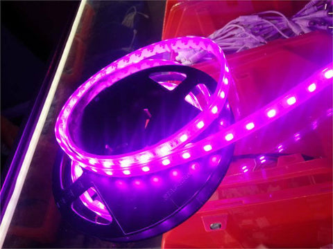 12V LED Strip Lights ~ 12V Single Color Light Strips ~ 5050SMD Single Color ~ 5050 Single Color LED Kit - 5050SMD NovaBright Pink Flexible Waterproof LED Light  Strip 16 Ft Reel Kit