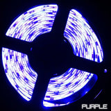 24V LED Strip Lights - 24V 5050 Color Changing RGB Super Bright LED Strip Light 16 Ft Reel 150 LED Reel Only