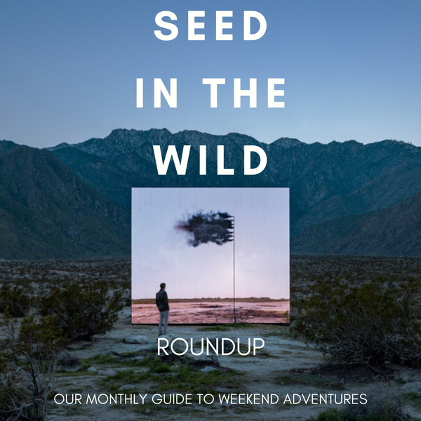 #SEEDinthewild Round Up - APRIL