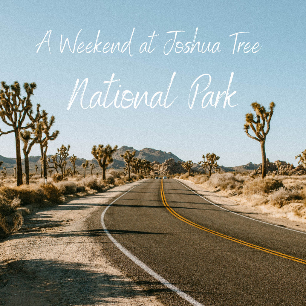 A Weekend at Joshua Tree