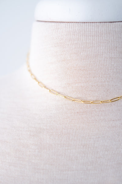 Medium Width Gold Chain Necklace