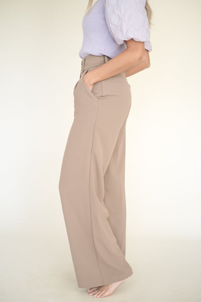 Opalescent Claw Hair Clip