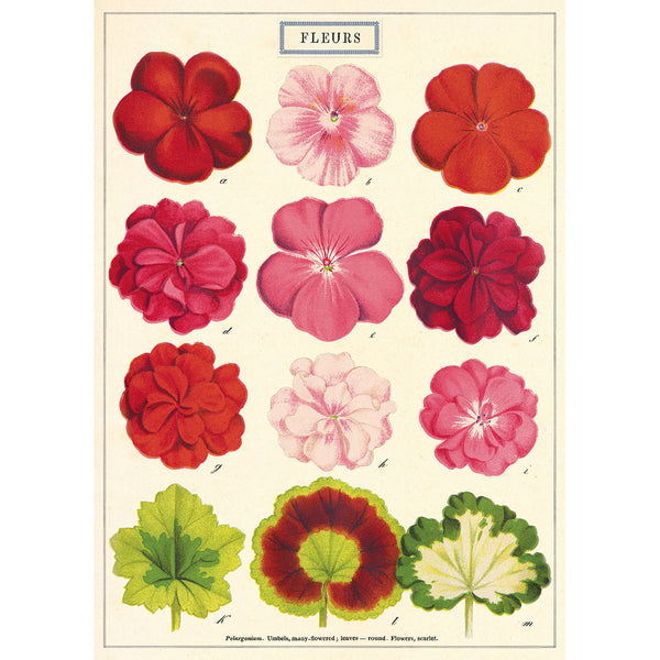 Flower Series Poster Wall Hanging