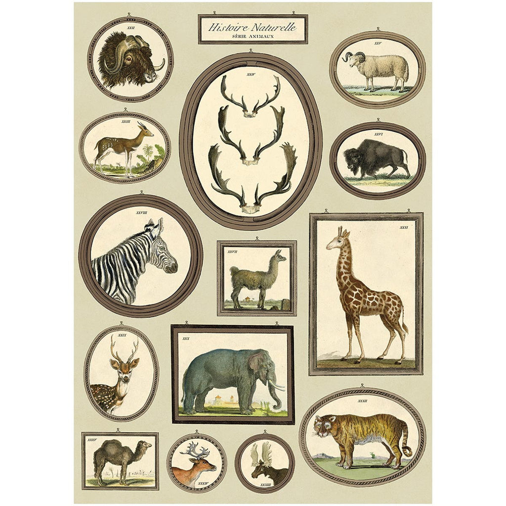 Wild Animals Poster Wall Hanging