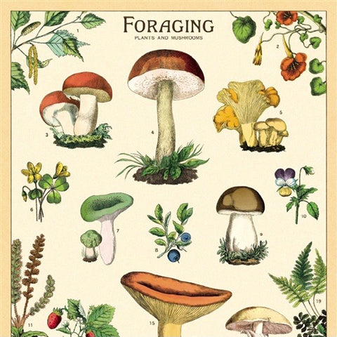 Foraging Wall Print