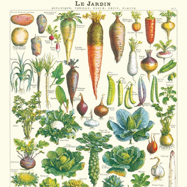 Le Jardin Vegetable School Chart