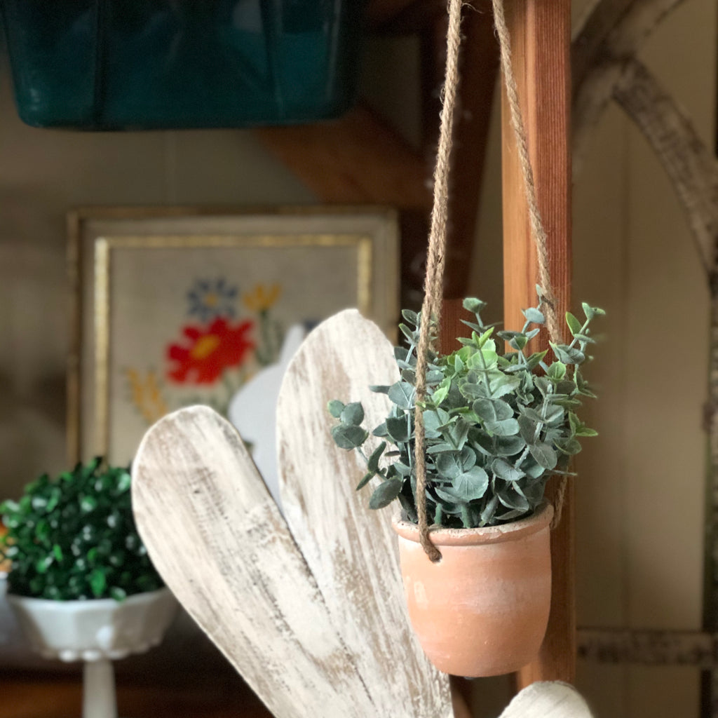 Eucalyptus Hanging Pot