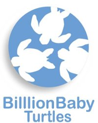 Billion Baby Turtles