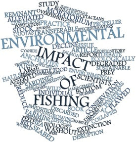 Environmental Impact of Overfishing