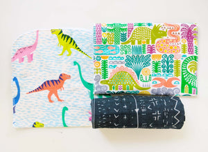 Burp Cloth Set - Dinosaurs
